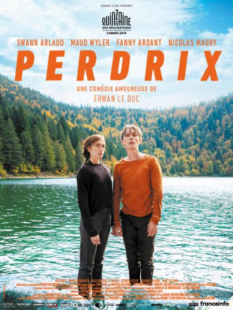 Affiche du film Perdrix